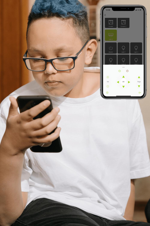 Toyama Controls - WizHom app IR  Remote