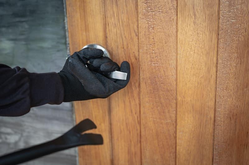 Toyama Controls - Prevent burglar entering home