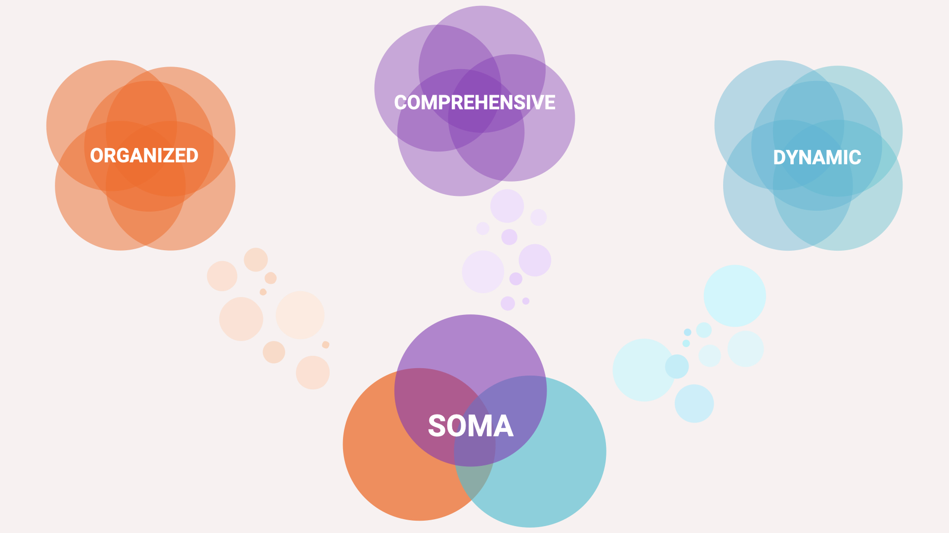 "An infographic: orange circles overlapping with the word ""organized"", purple circles with the word ""comprehensive"", teal circles with the word ""dynamic"". Other circles point down from these words to three overlapping circles of the three colors and the acronym ""S.O.M.A."" inside."