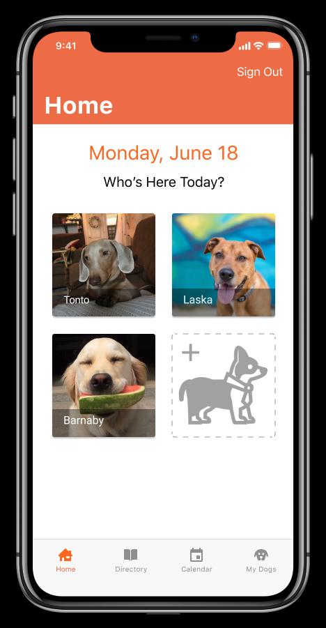 DogGo app on iPhone X