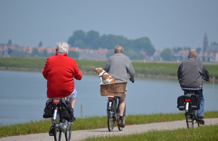older people riding bicycles on a sunny day with a dog in a basket