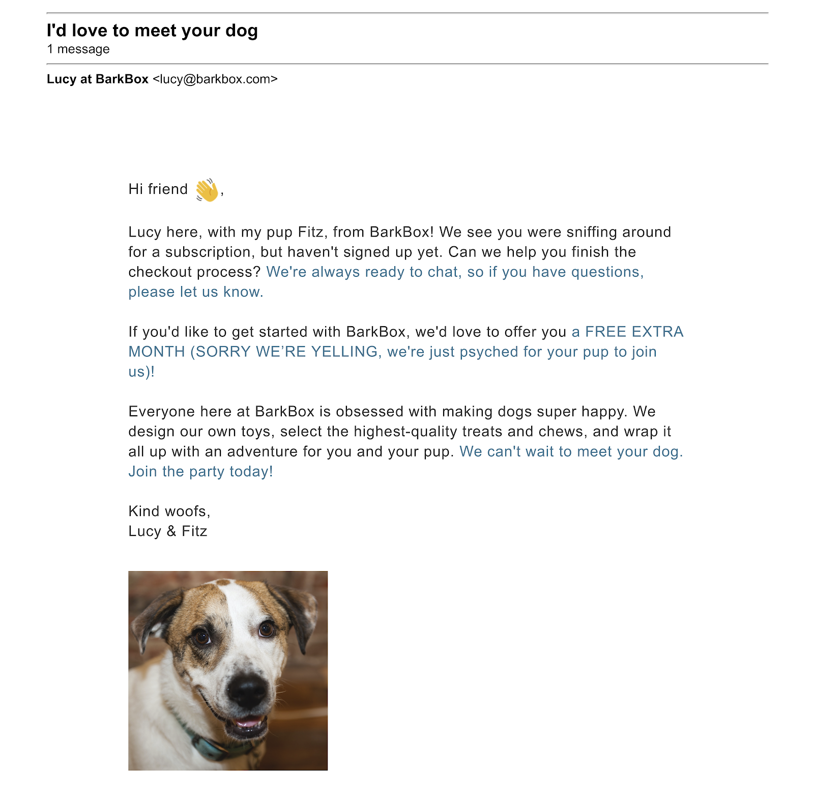 BarkBox Abandoned Email - Personalization