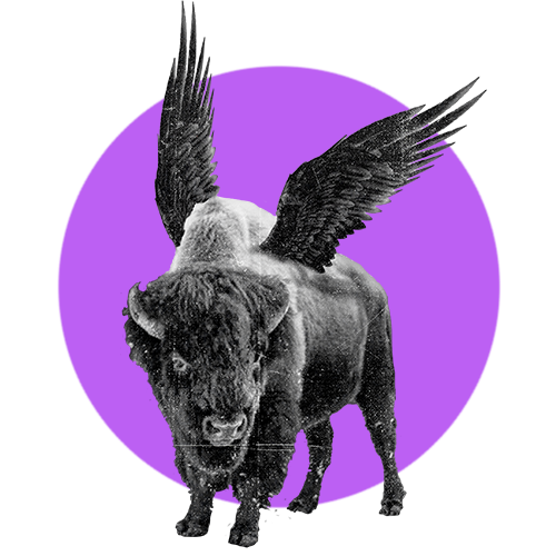 A purple circle with a photo of a Buffalo with wings inside it.