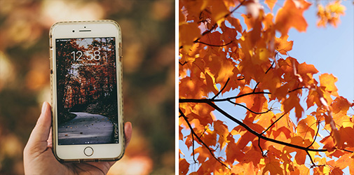 Get lessons on how to do photography on your own device