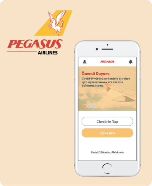 Pegasus Redesign Tasarım Projesi