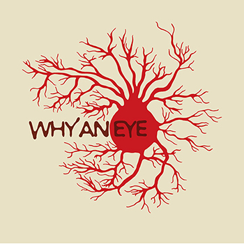 Why An Eye