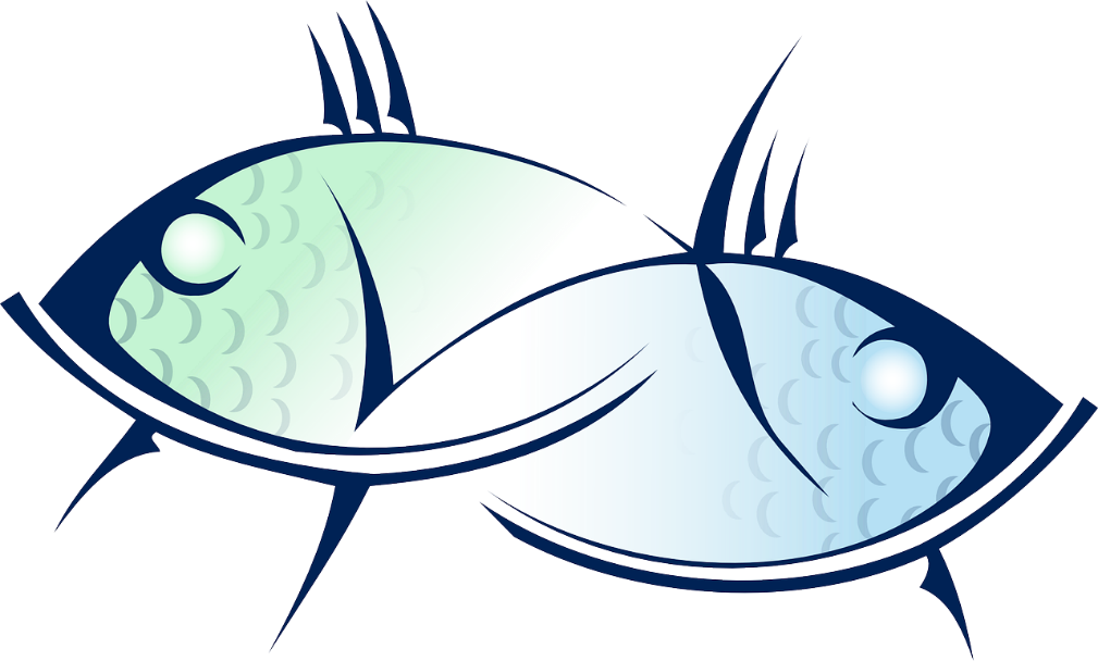 Pisces pair of fish