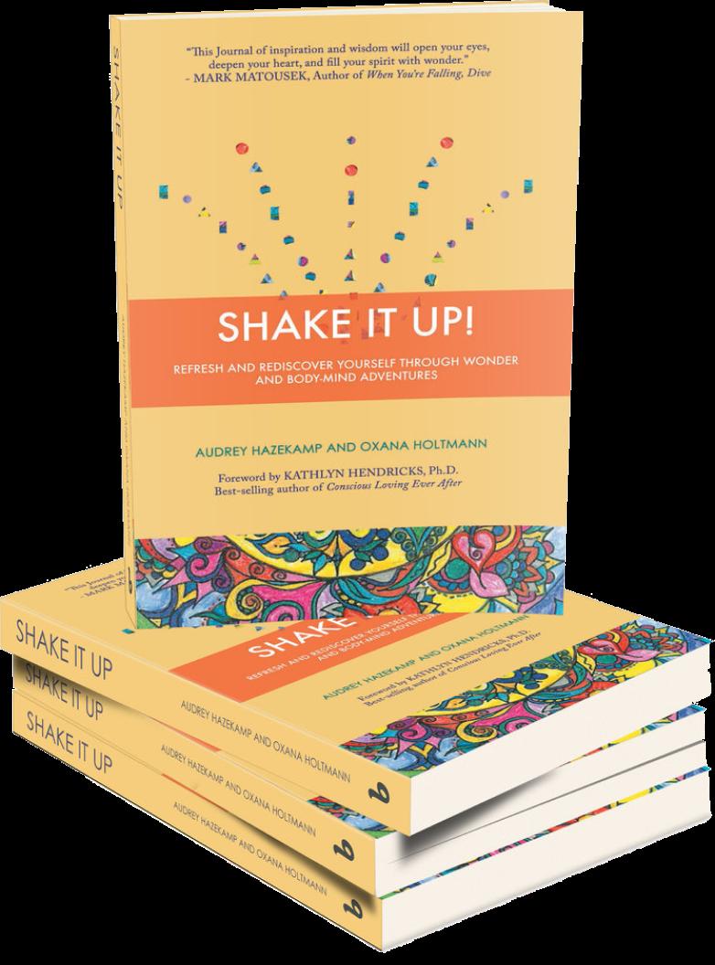 Shake It UP! journal