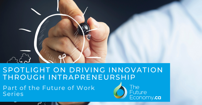 Driving innovation through intrapreneurship and developing Canadian SMEs with Irene Sterian.