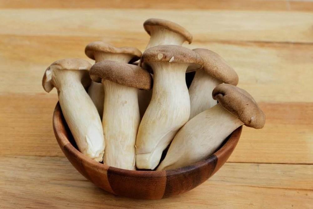 Nấm là nguồn thức ăn bổ sung kẽm dồi dào