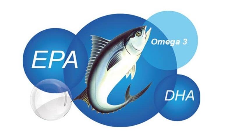 DHA và EPA là hai thành phần quan trọng có mặt trong dầu cá