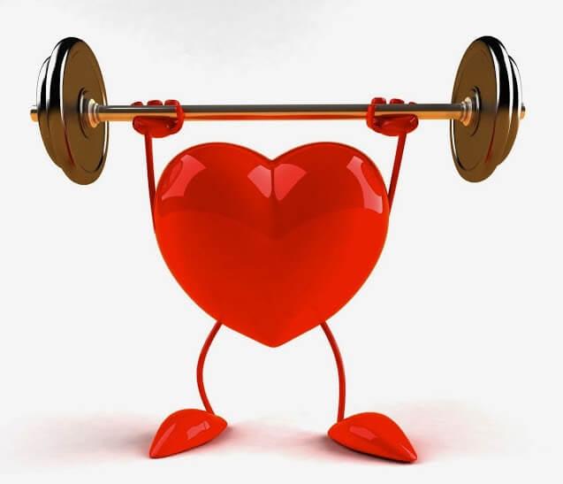 Omega 3 giúp hệ tim mạch ổn định và phòng ngừa các bệnh liên quan