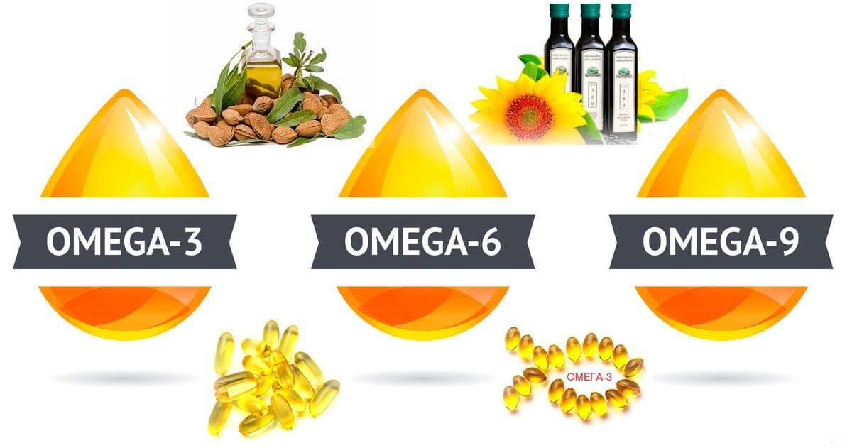 Bổ sung Omega 369 thông qua các loại thực phẩm hàng ngày