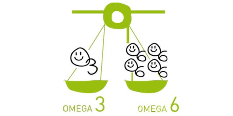 bổ sung omega 6 đúng liều lượng