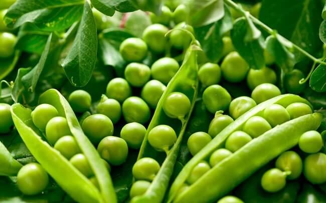 Đậu Hà Lan là những thực phẩm giàu chất dinh dưỡng