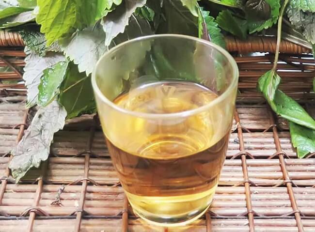 Nước lá tía tô giúp trẻ giảm đầy hơi chướng bụng hiệu quả