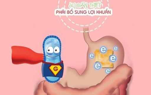 Bổ sung lợi khuẩn cho bé hết đi ngoài phân sống