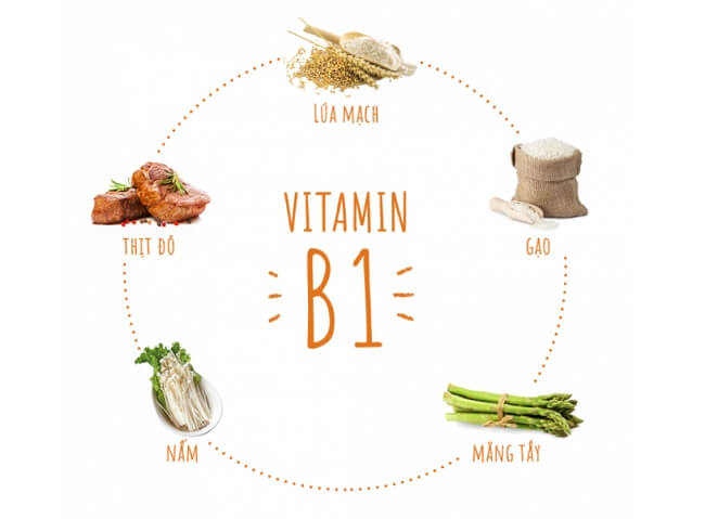 Vitamin B1 và các thực phẩm giàu vitamin B1
