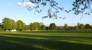 A peaceful sun-lit view of Hendon Park with no human in sight
