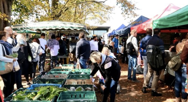 People browsing the Farmers Market in West Hampstead.