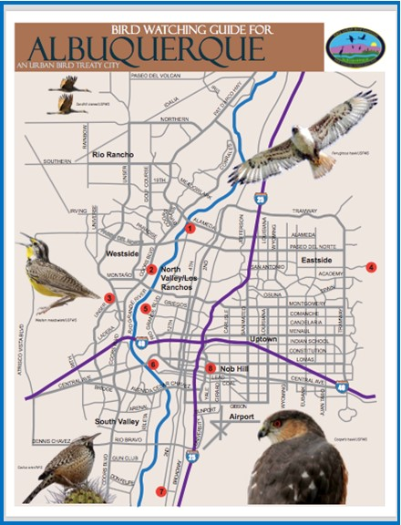 MetroABQ Bird Watching Map