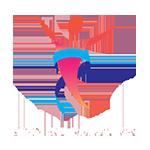 Premier Lipo Logo
