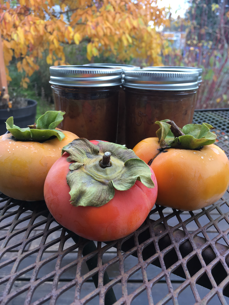Persimmon Happy Hour