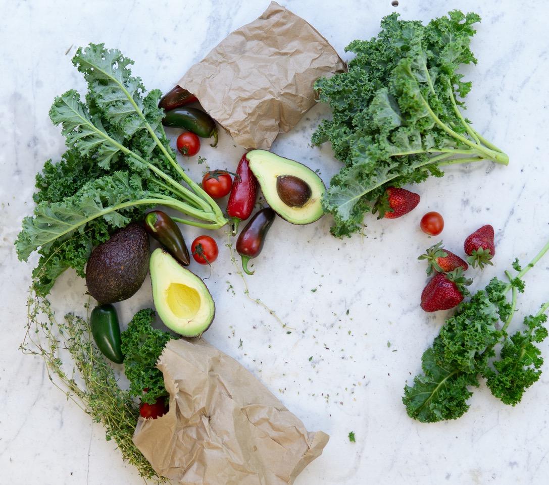 Antioxydants et alimentation  : comment lutter contre les radicaux libres ?