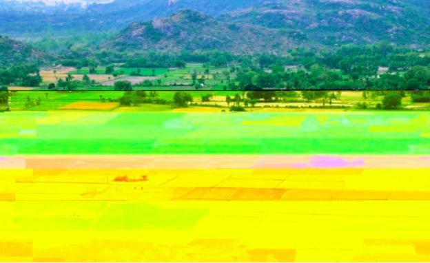 remote sensing agriculture