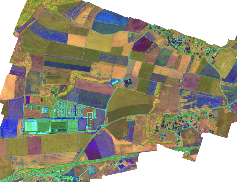 An HSI view from above taken by the Gamaya HSI camera displaying different sugarcane varieties