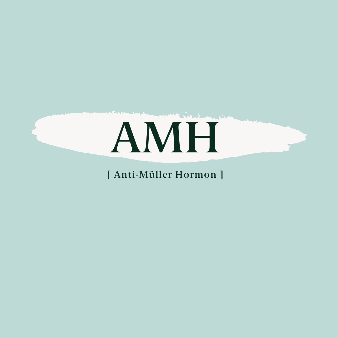 Was ist das Anti-Müller-Hormon (AMH)?