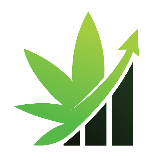 cannabis seo agency get ahead with your competitors