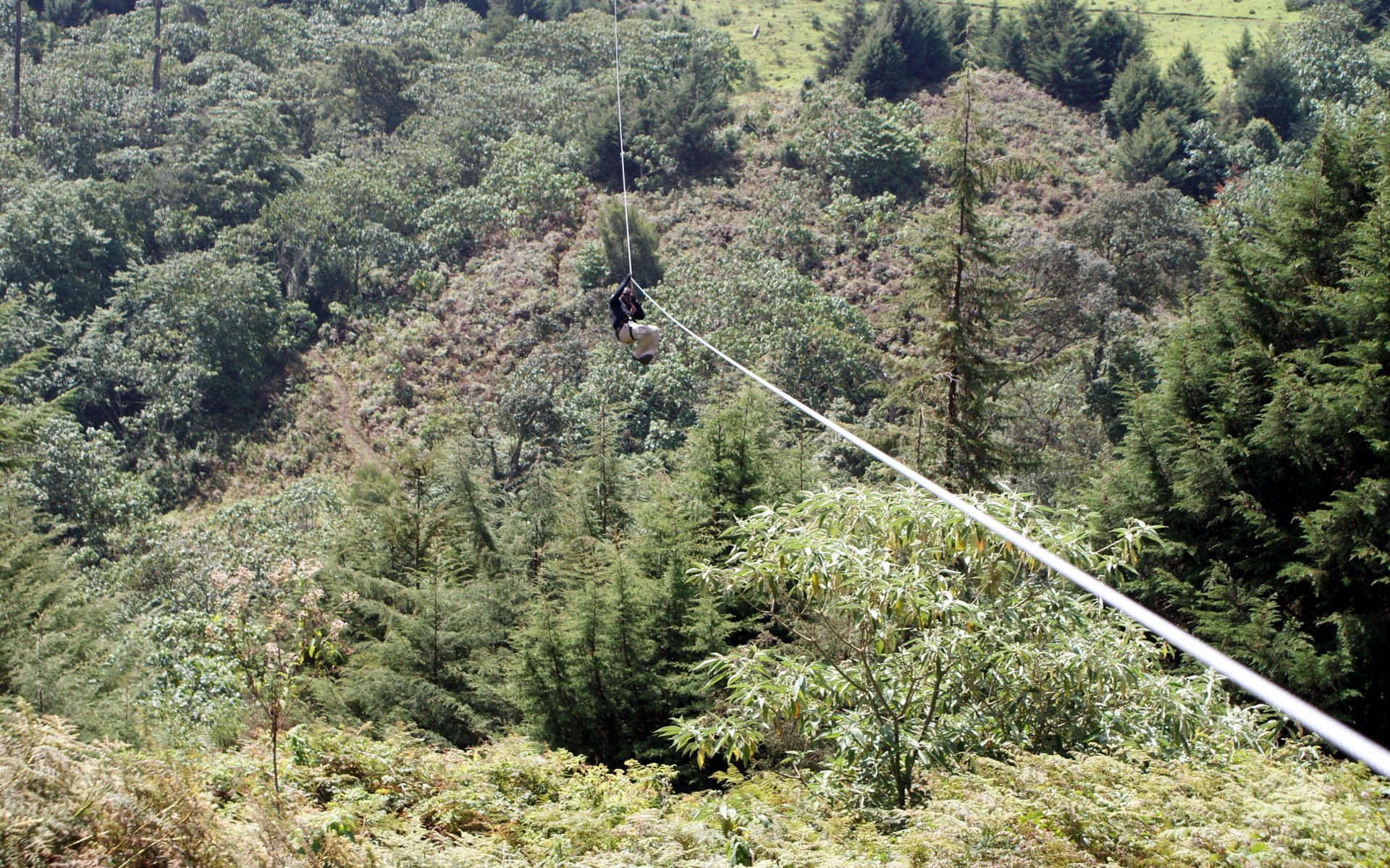 My experience ziplining at The Forest