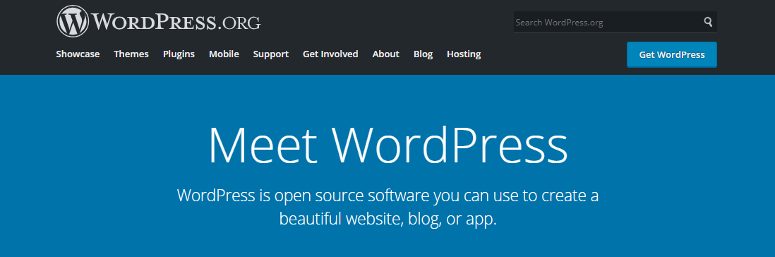 Types of SaaS software: CMS, WordPress