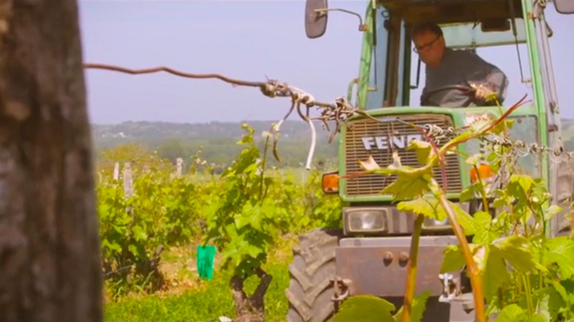 Photo de tracteur à Cheverny