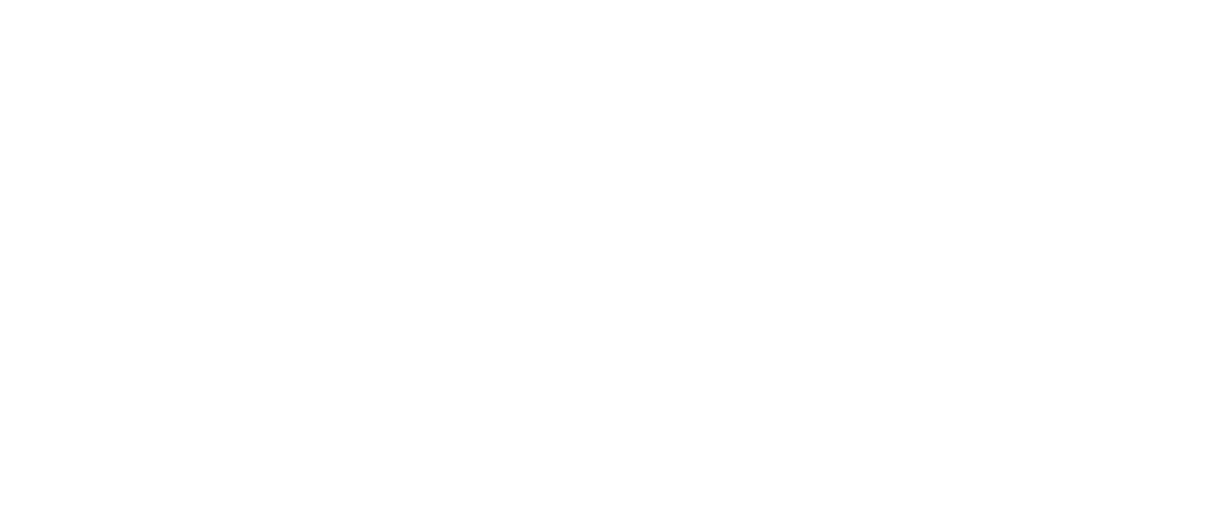 MSGA Reversed Horizontal Primary Logo