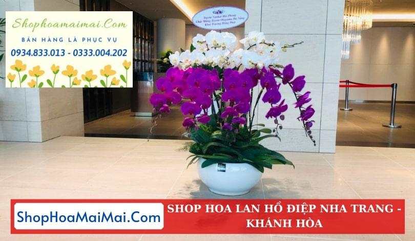 Cửa hàng hoa lan hồ điệp Nha Trang