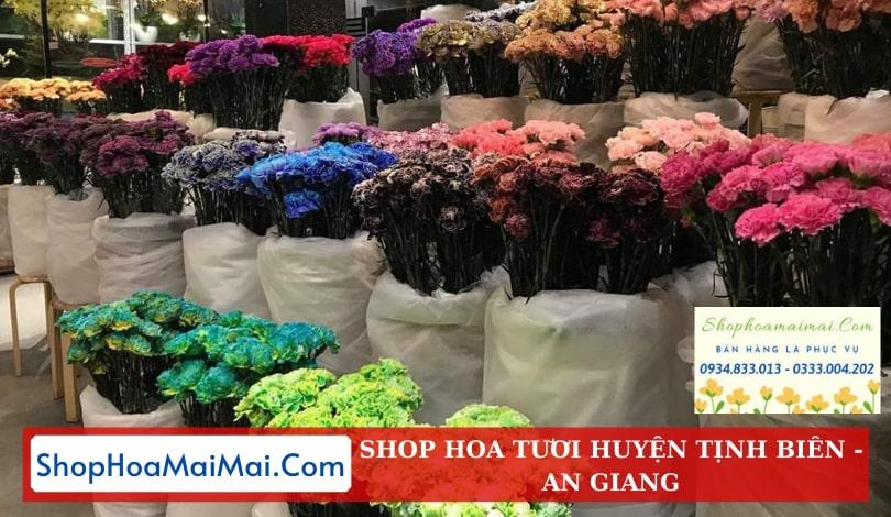 Shop Hoa Tươi Huyện Tịnh Biên