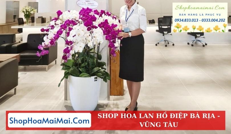 Shop Hoa Lan Hồ Điệp Tại Bà Rịa