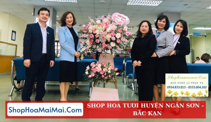 Đặt Hoa Tươi Online Huyện Ngân Sơn