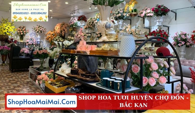 Cửa Hàng Hoa Huyện Chợ Đồn