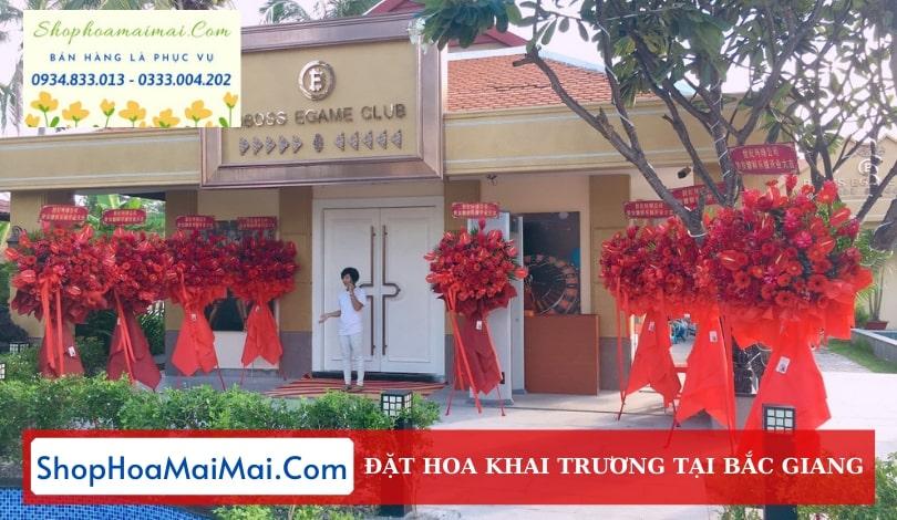 Dịch Vụ Điện Hoa Khai Trương Bắc Giang
