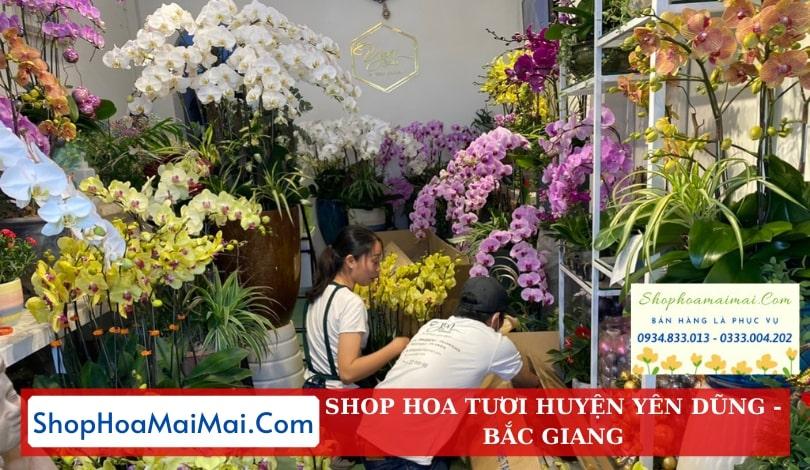Cửa Hàng Hoa Huyện Yên Dũng