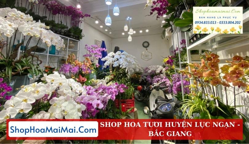 Cửa Hàng Hoa Tươi Huyện Lục Ngạn