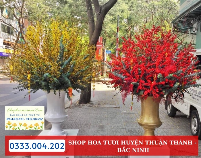 Dịch Vụ Tặng Hoa Tại Huyện Thuận Thành