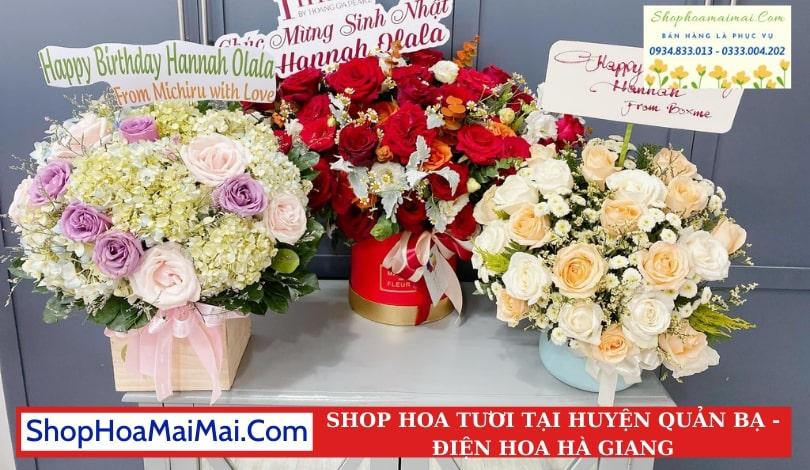 Shop Hoa Tươi Huyện Quản Bạ