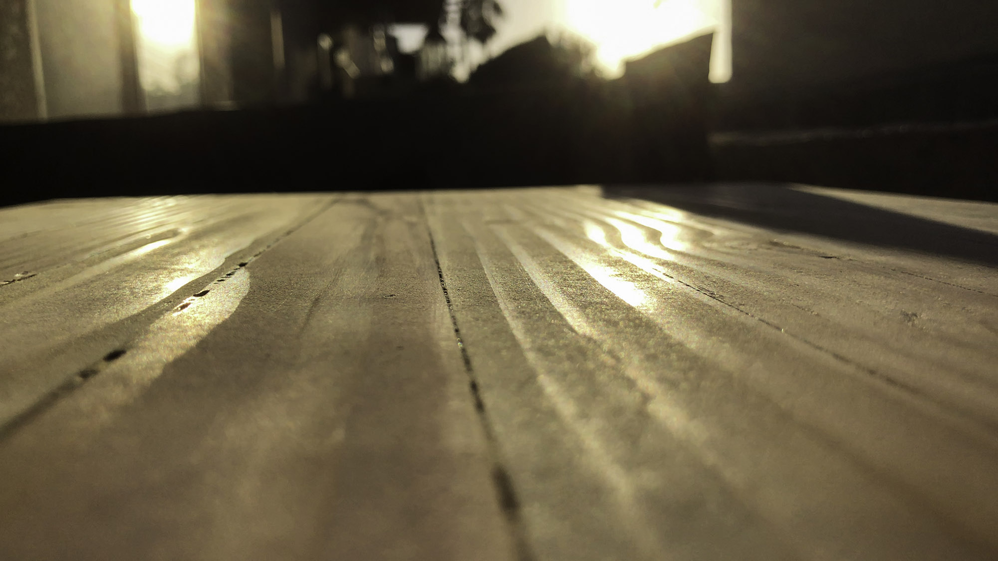 Woodworking bench lit up by warm evening sun