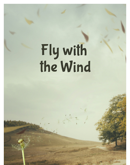 Fly with the wind