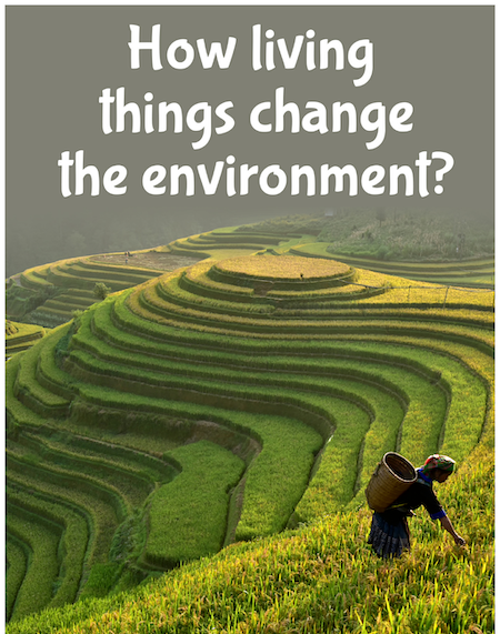 How living things change the environment?