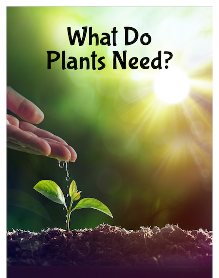 What do Plants need to grow and reproduce?